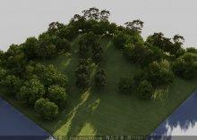 鸟瞰配景树5棵